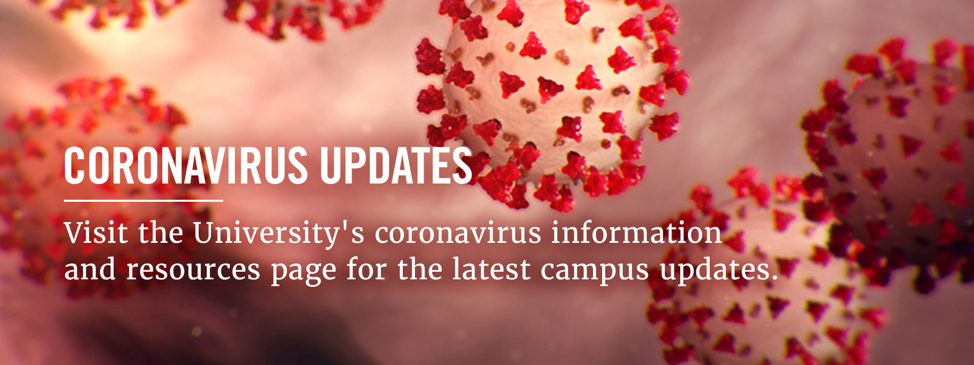 University of Georgia coronavirus (COVID‑19) information and resources