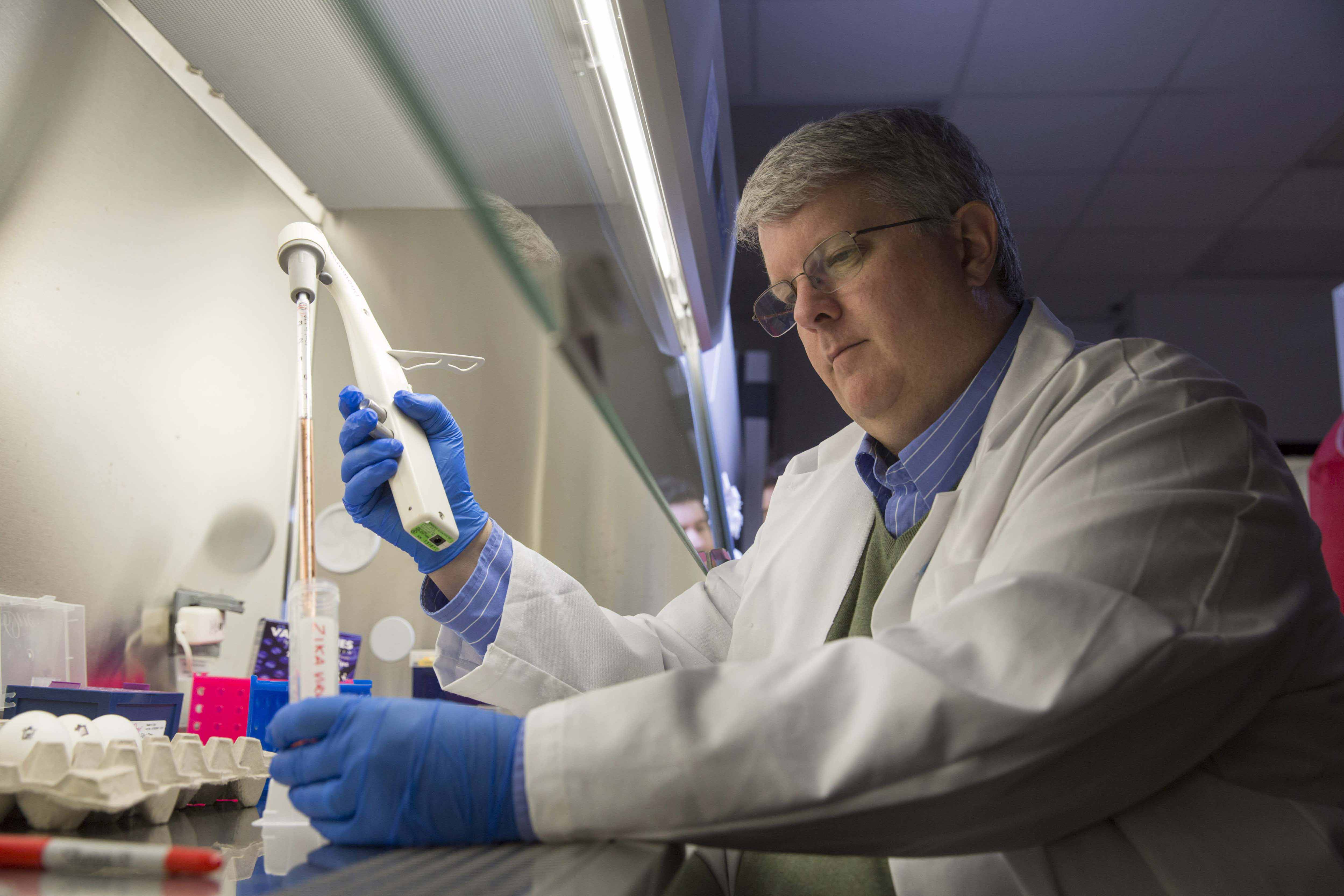 Ted M. Ross, Georgia Research Alliance Eminent Scholar of Infectious Diseases in UGA's College of Veterinary Medicine, is leading an NIH project to create and test new influenza vaccines that may one day replace seasonal vaccines.